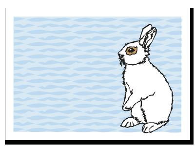 "Chinese zodiac sign postcard ""Rabbit"""