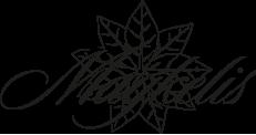Maykelis logo artwork for branding