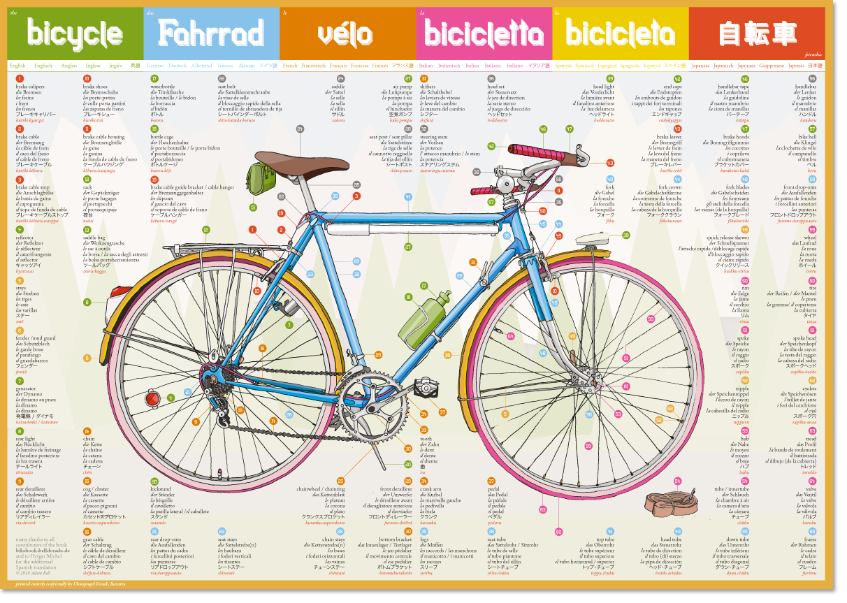 ecofriendly printed bicycle poster